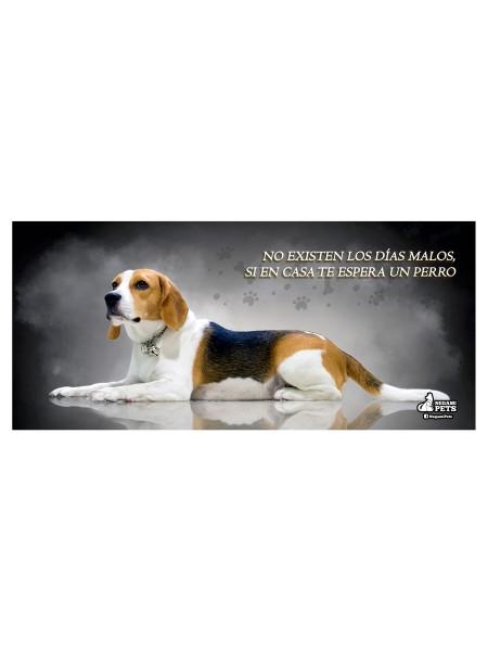Taza Blanca Beagle