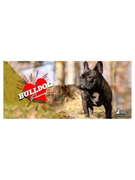 Taza Blanca Bulldog Frances